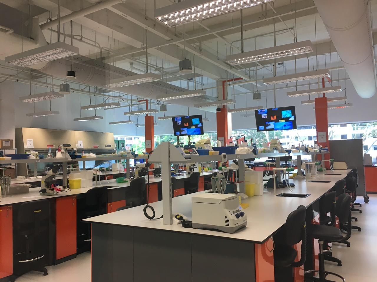 Du học Singapore ngành công nghệ tại Học viện PSB