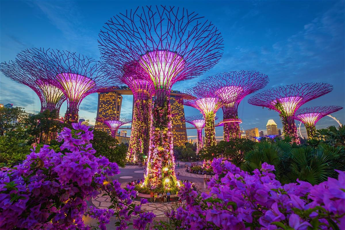 Đất nước Singapore và nền giáo dục của đảo quốc này luôn có sức hấp dẫn với sinh viên quốc tế