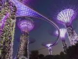 Chi phí du học Singapore một năm là bao nhiêu?