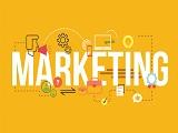 Ngành marketing tại Đại học JCU Singapore đào tạo những gì?
