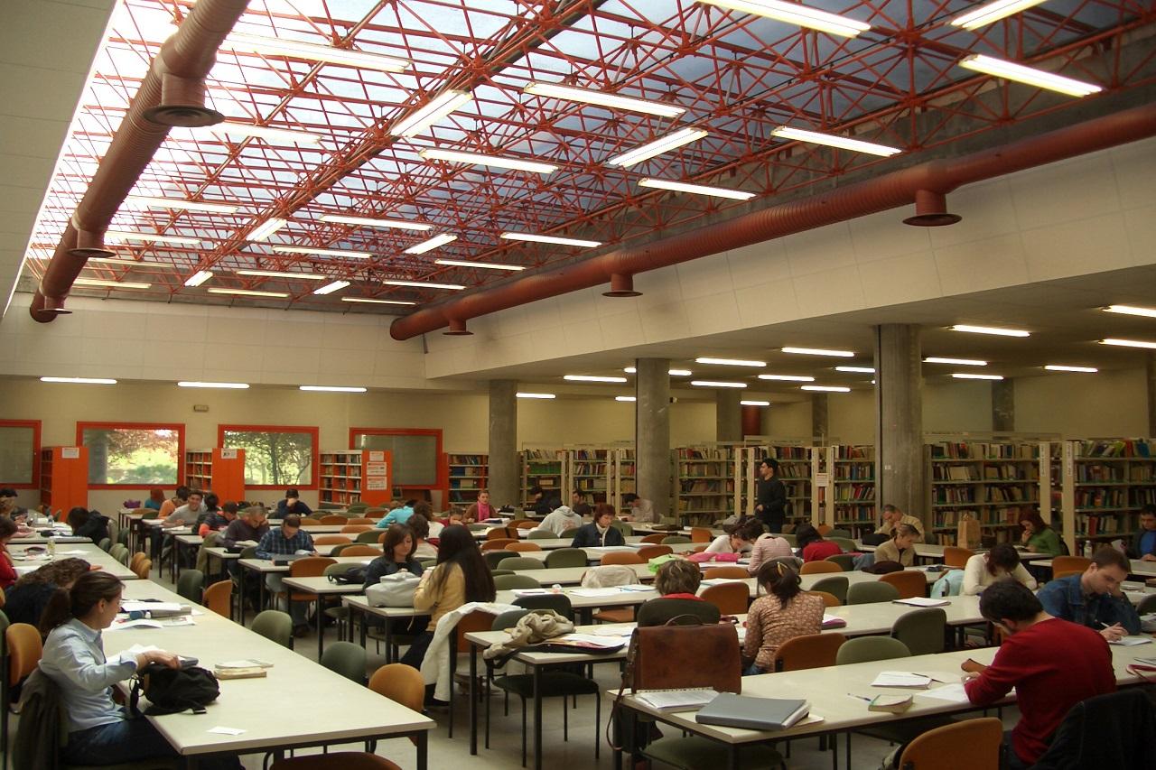 Sinh viên tự học trong thư viện Đại học Complutense de Madird
