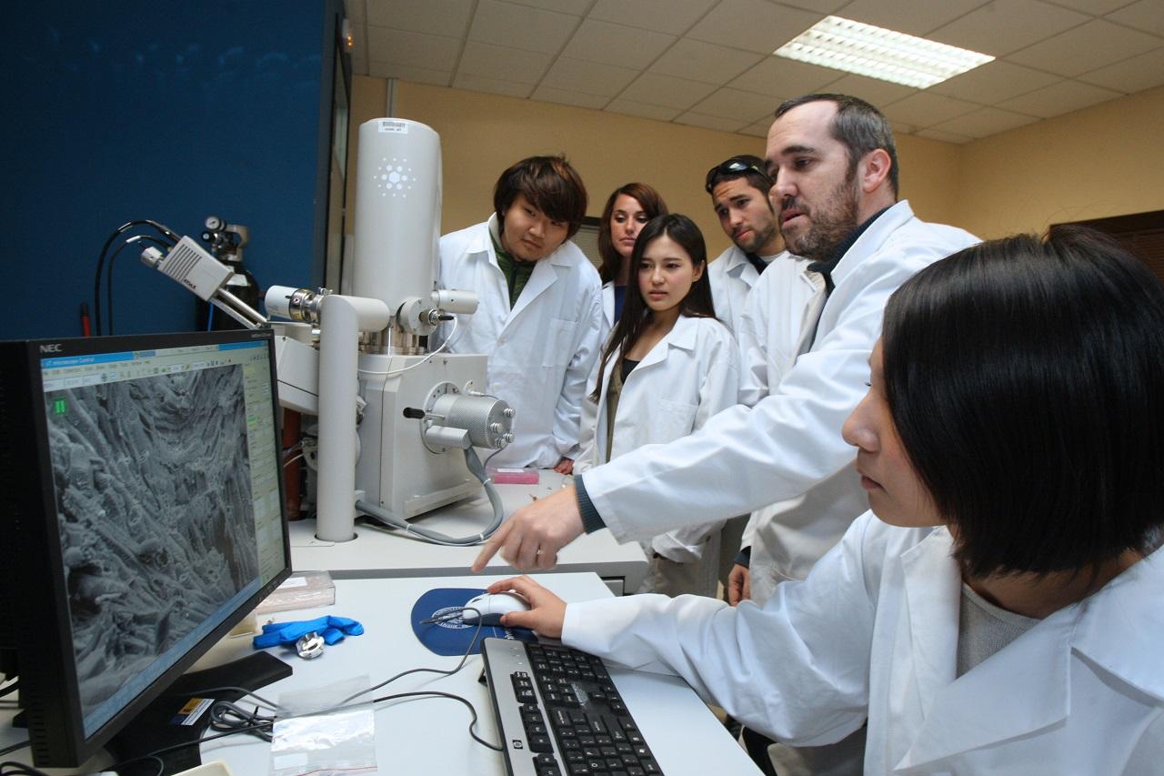 Sinh viên Đại học Valladolid trong giờ nghiên cứu