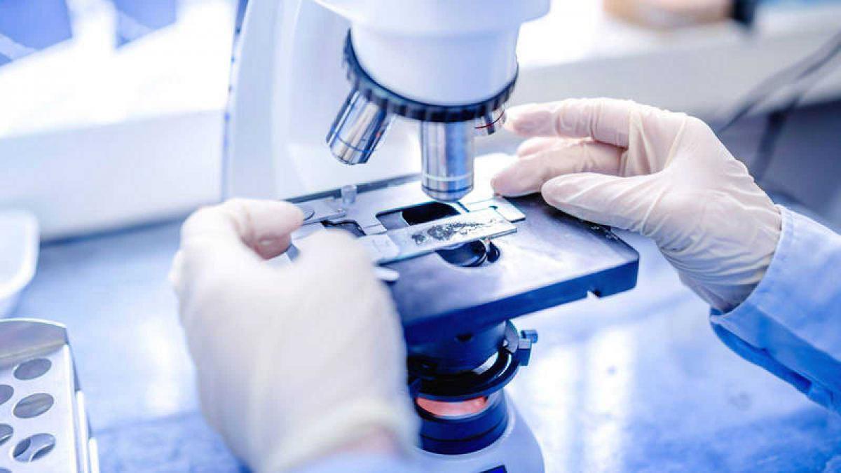 Đại học Zaragoza nổi tiếng về nghiên cứu ung thư miễn dịch