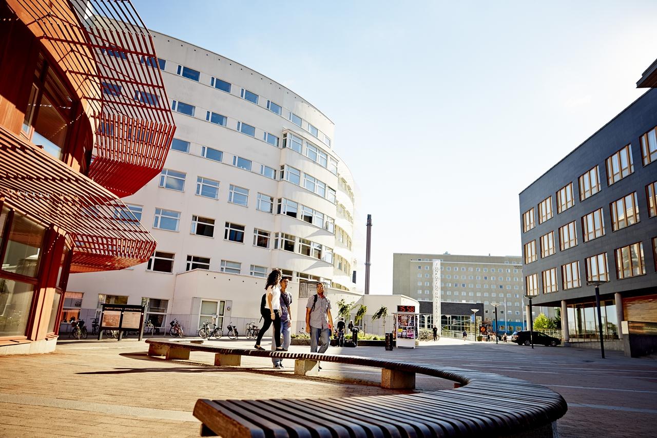 Đại học Jonkoping - một đại diện uy tín của hệ thống giáo dục đại học Thụy Điển