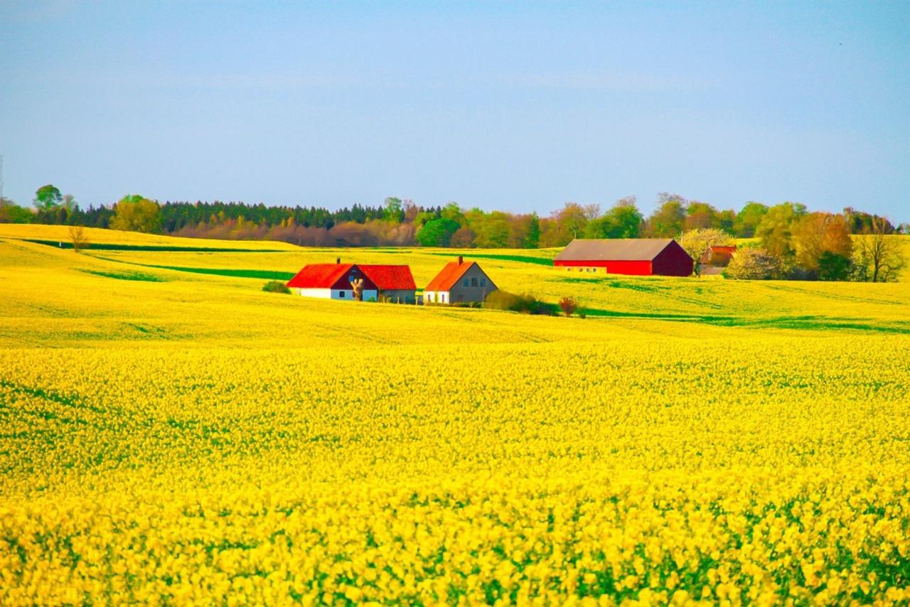 Hội thảo du học Thụy Điển