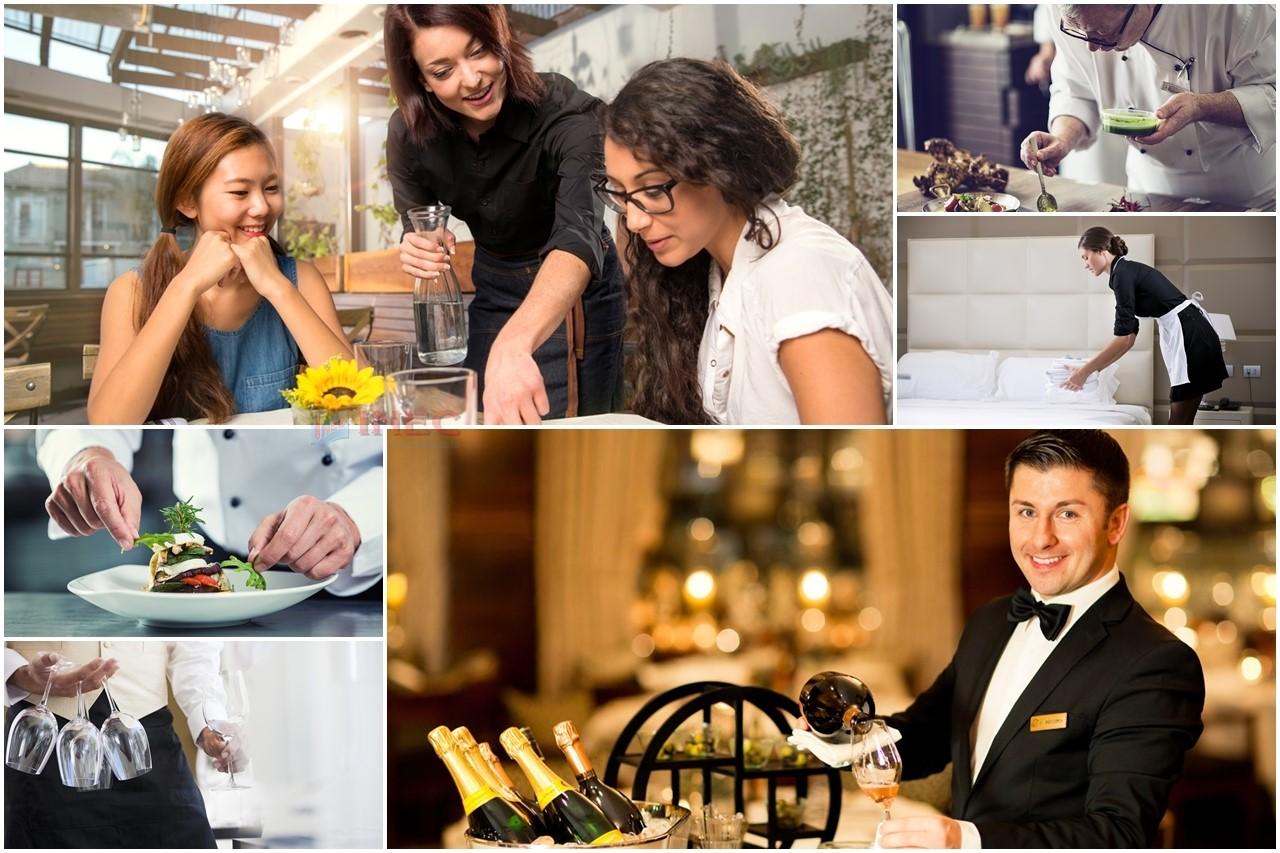 Bạn có hợp với ngành Nhà hàng khách sạn?