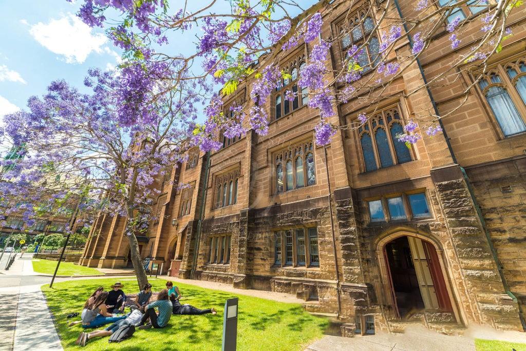 Trải nghiệm môi trường giáo dục đại học từ sớm cùng Study Group