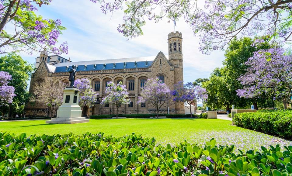Đại học Adelaide – thành viên nhóm Go8 Úc