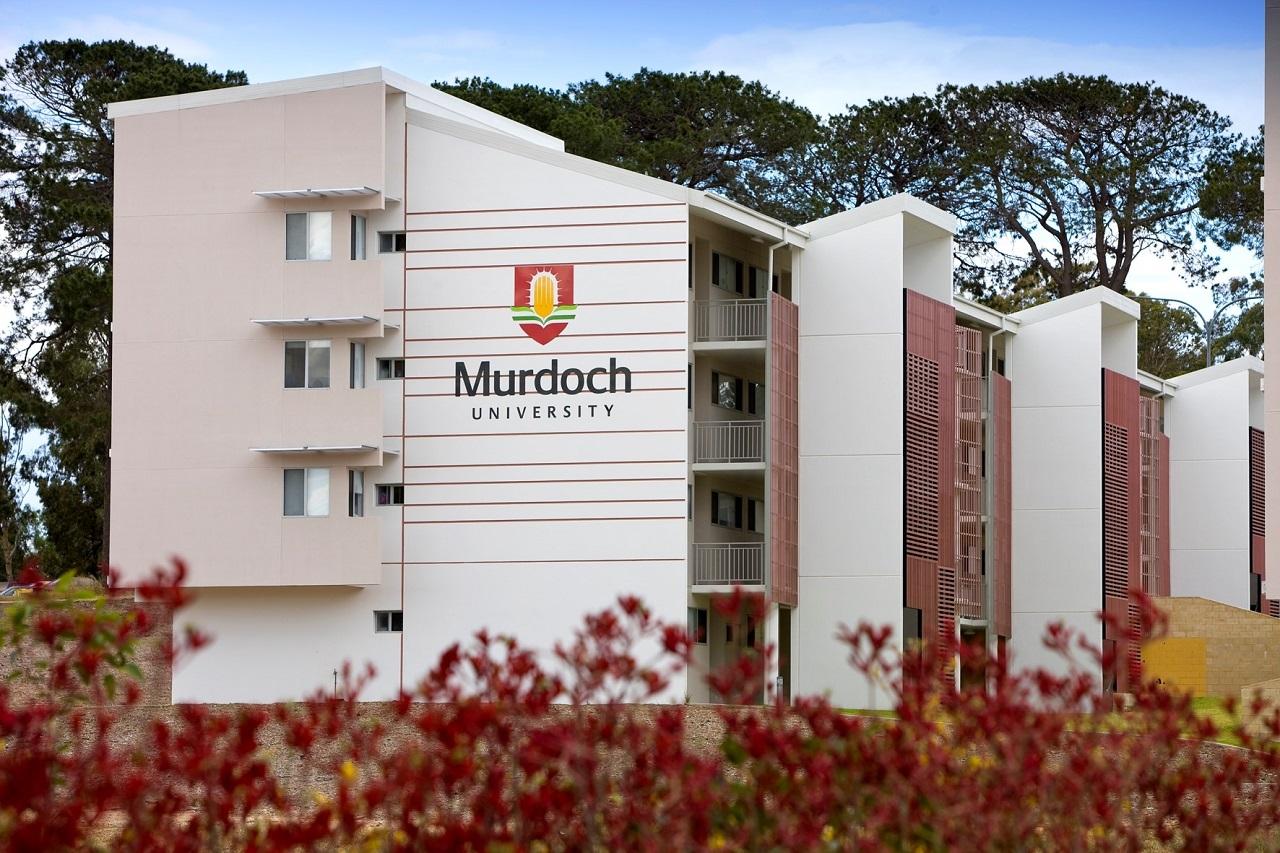 Đại học Murdoch với thế mạnh đào tạo ngành Kỹ thuật
