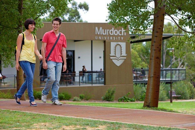 Sinh viên trường Đại học Murdoch