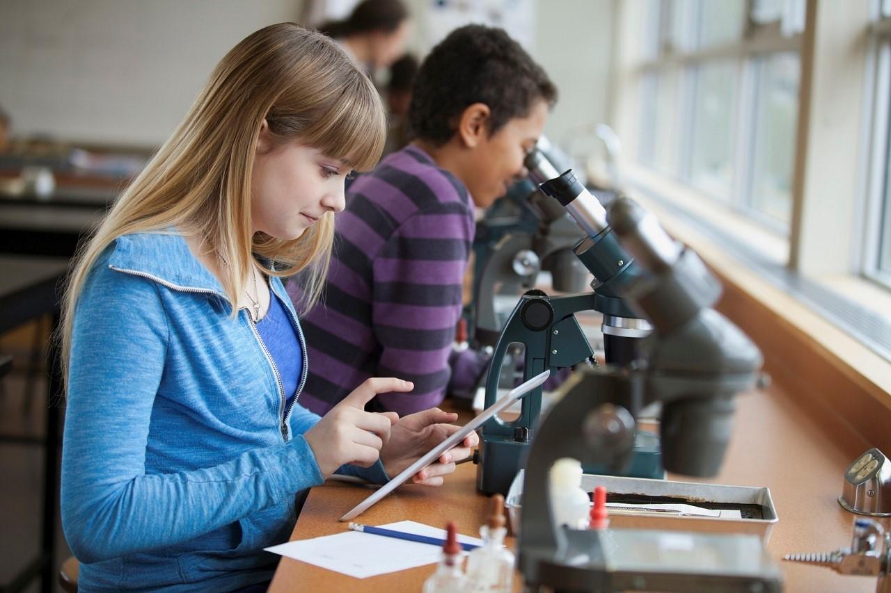 Lộ trình du học Úc cho học sinh hết lớp 11