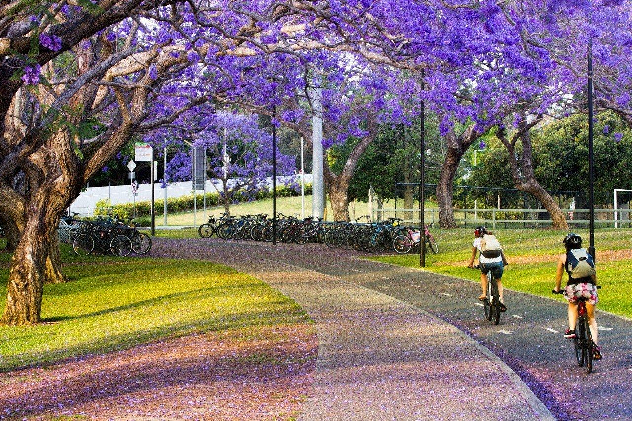 Hỏi – đáp về những thay đổi trong chính sách visa du học Úc 3