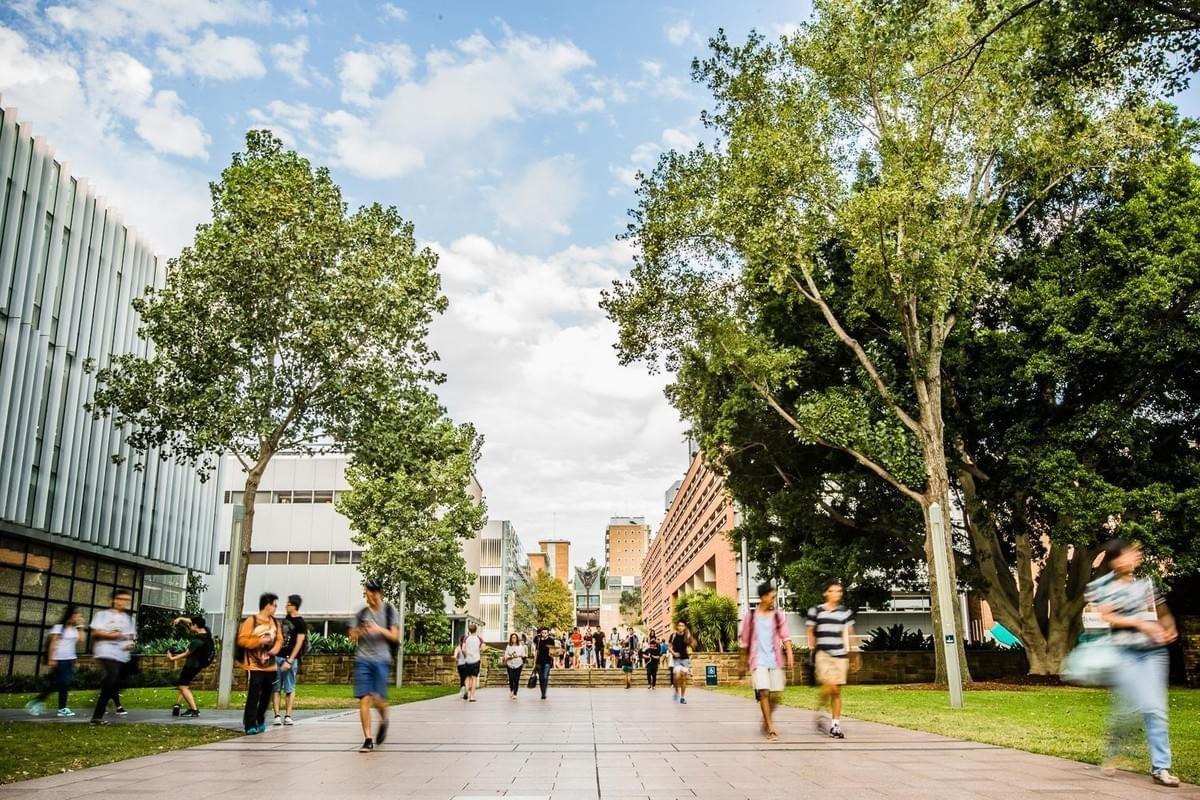 Du học Úc sau khi tốt nghiệp thpt: Tham gia khóa dự bị đại học