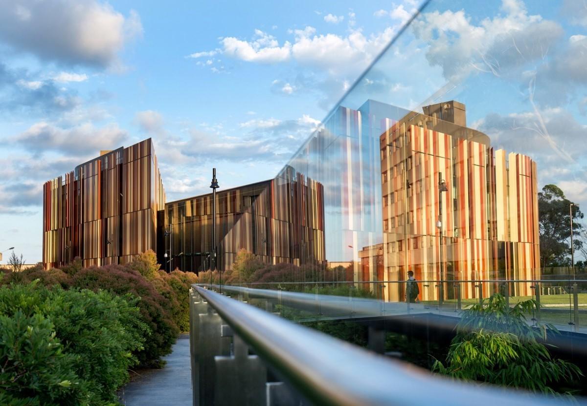 Ngành Kế toán tại Đại học Macquarie - top 200 thế giới