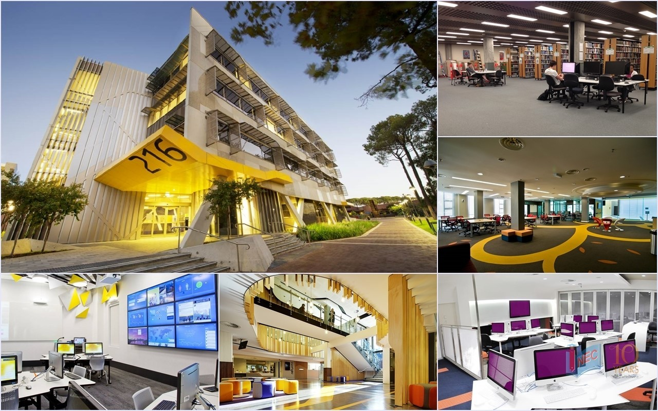 Ngành Kế toán tại Đại học Curtin - top 200 thế giới