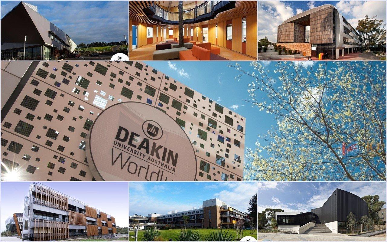 Ngành Luật tại Đại học Deakin