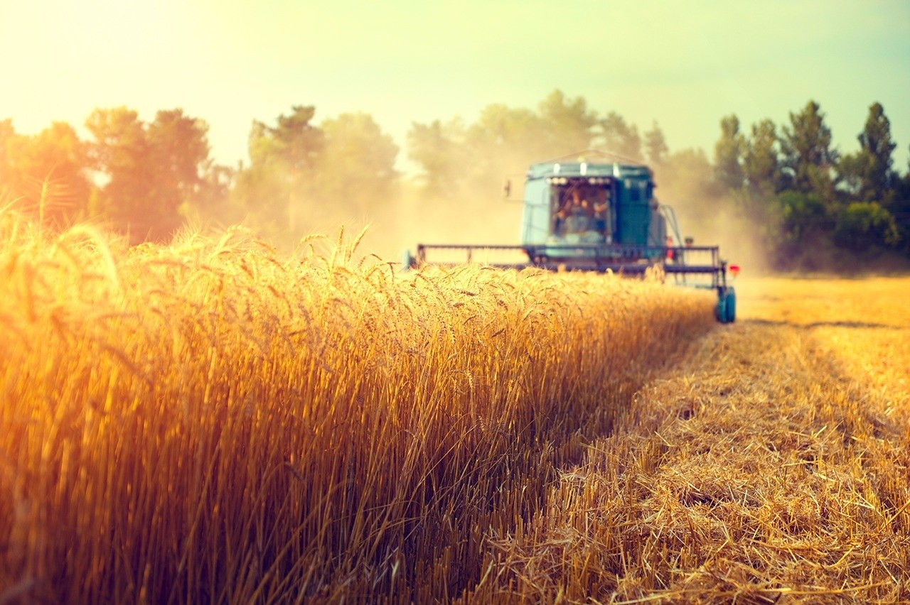 Tại sao nên chọn du học Úc ngành nông nghiệp?