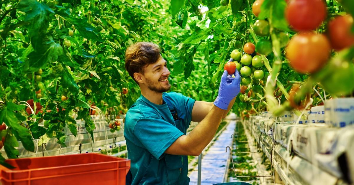 """Du học Úc ngành nông nghiệp - Lĩnh vực """"khát"""" nhân lực trình độ cao"""