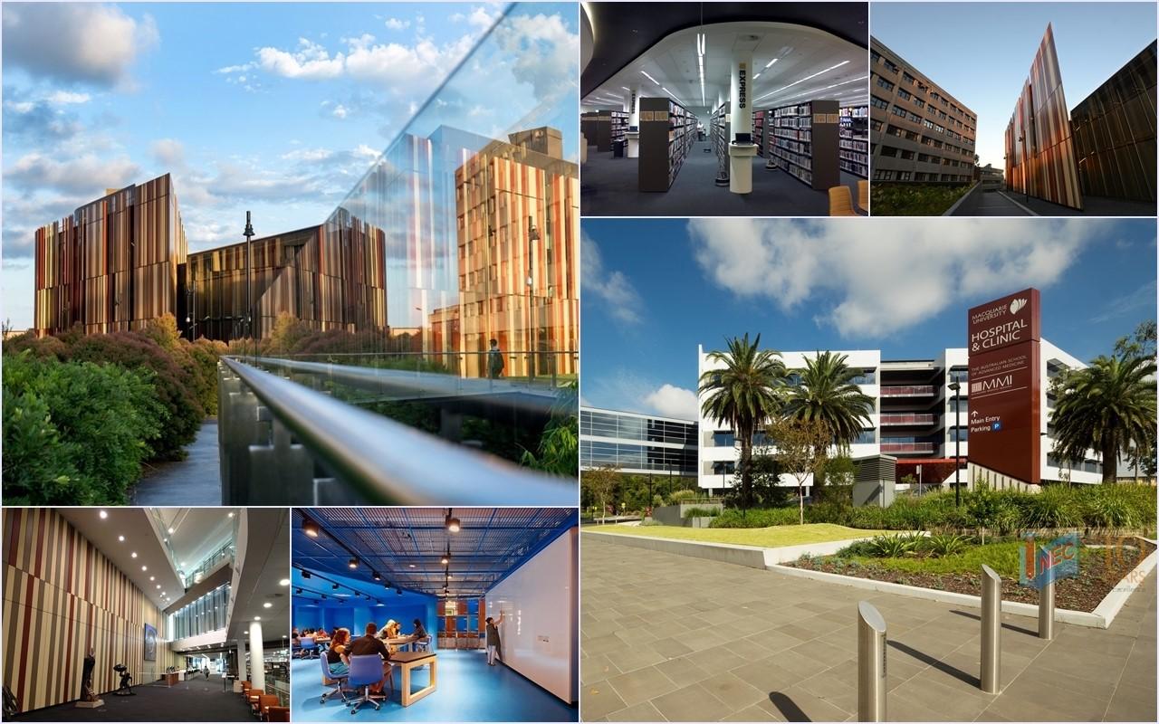 Du học ngành tài chính ngân hàng tại Úc: Đại học Macquarie