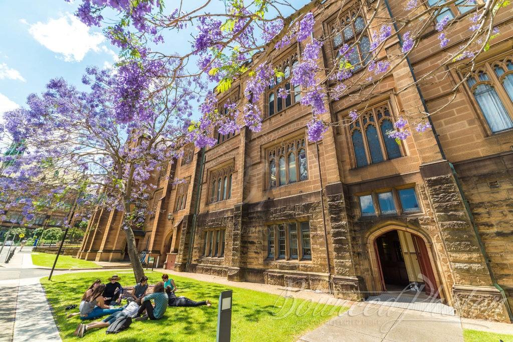 Du học Úc ngành điều dưỡng tại Đại học Sydney - Top 9 khóa học tốt nhất thế giới