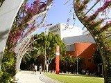 Học bổng du học Úc trị giá 10.000 AUD từ Cao đẳng và Đại học Griffith