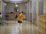Du học Úc ngành giáo dục – ngành học hạnh phúc nhất thế giới