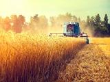 """Du học ngành nông nghiệp - Lĩnh vực """"khát"""" nhân lực trình độ cao tại Úc"""