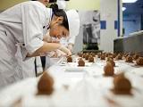Chương trình Chứng chỉ III về làm bánh tại Le Cordon Bleu Adelaide