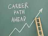 Cơ hội việc làm có thật sự rộng mở với sinh viên du học Hà Lan?