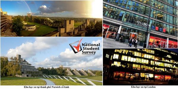 Học bổng 100% tại trường số 1 Anh quốc