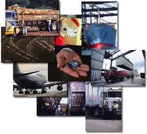 Du học Hà Lan ngành Logistics 2