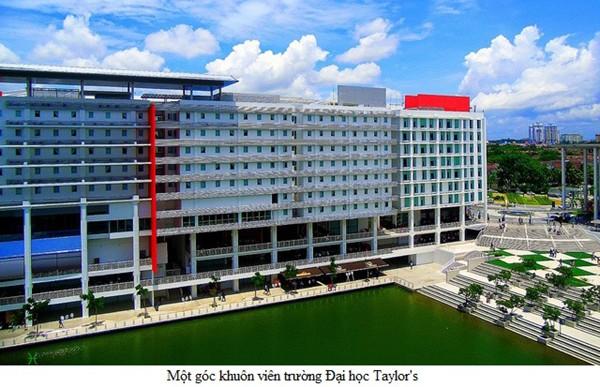 Ngành thiết kế và giáo dục hướng đến sự khác biệt của Đại học Taylor's