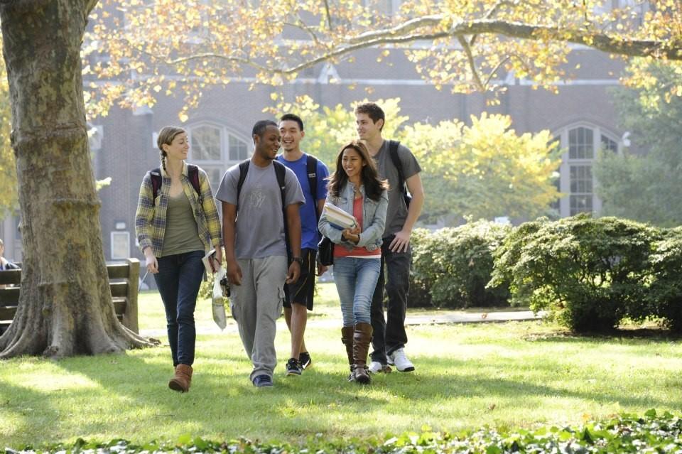 Cơ hội du học New Zealand với 3 suất học bổng hấp dẫn