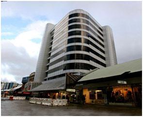 Du học New Zealand - Học viện Quốc tế MFH