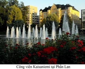 cong-vien-phan-lan