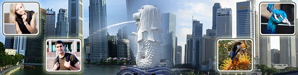 study_singapore