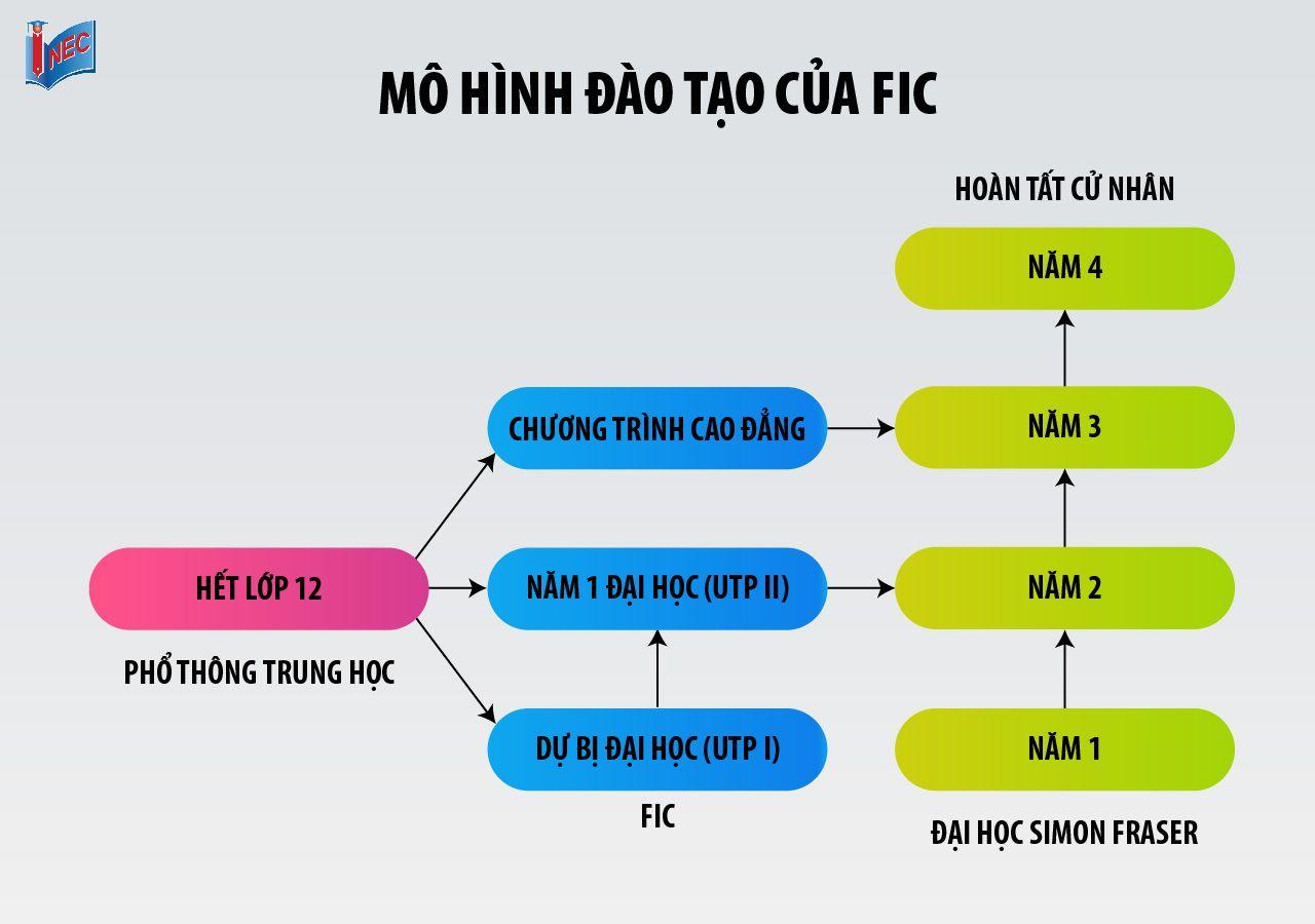Mô hình đào tạo của FIC