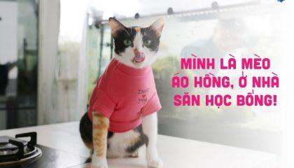 31-03-20-15-ngay-nuoc-rut-cho-hoc-bong-du-hoc-thuy-dien-tai-dai-hoc-jonkoping-2