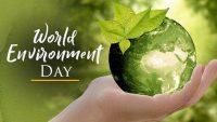 Đại học NHL Stenden nỗ lực sống xanh, tiết kiệm tài nguyên, bảo vệ môi trường