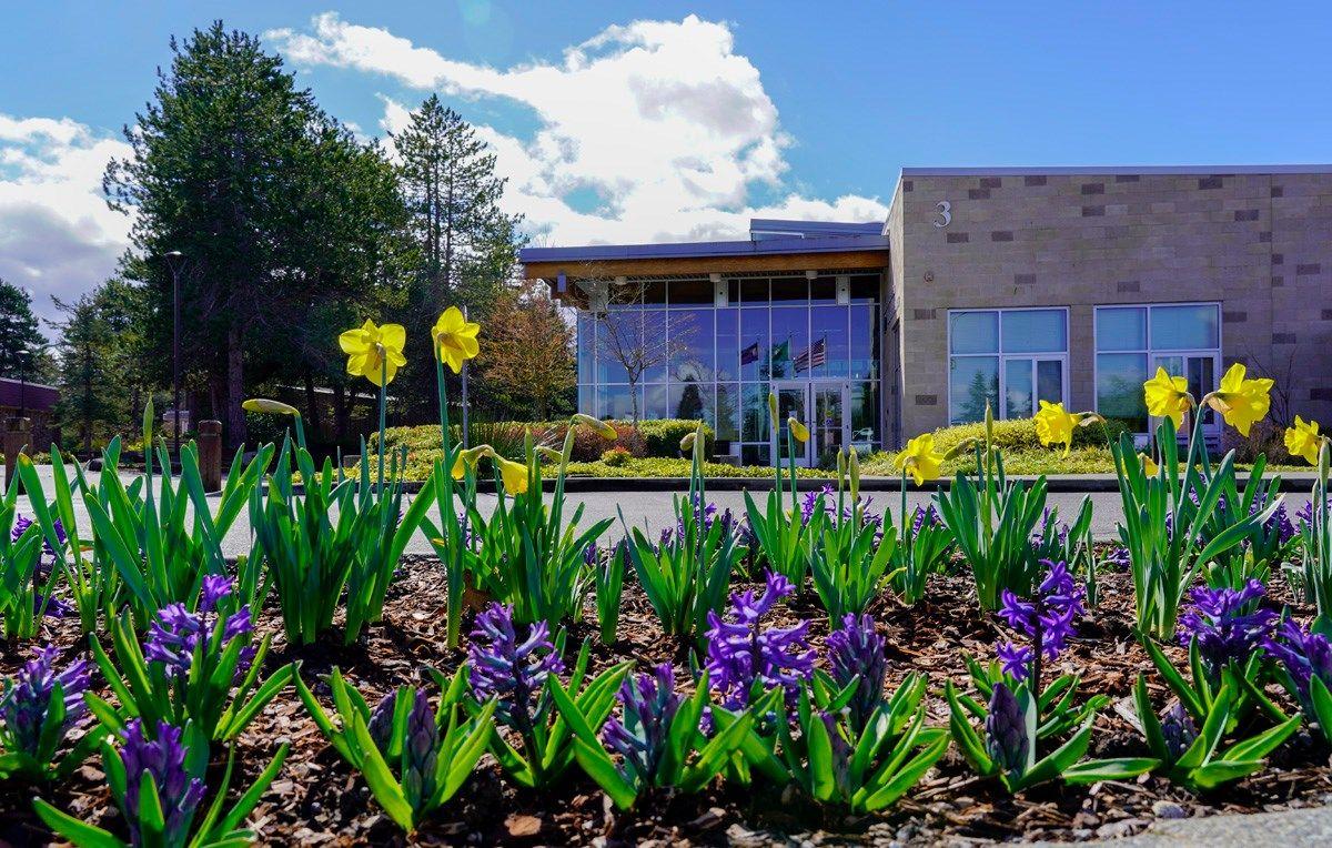Cao đẳng cộng đồng Tacoma