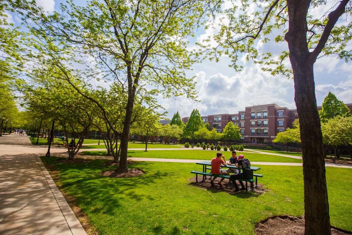 Khuôn viên xanh ngắt của Đại học DePaul