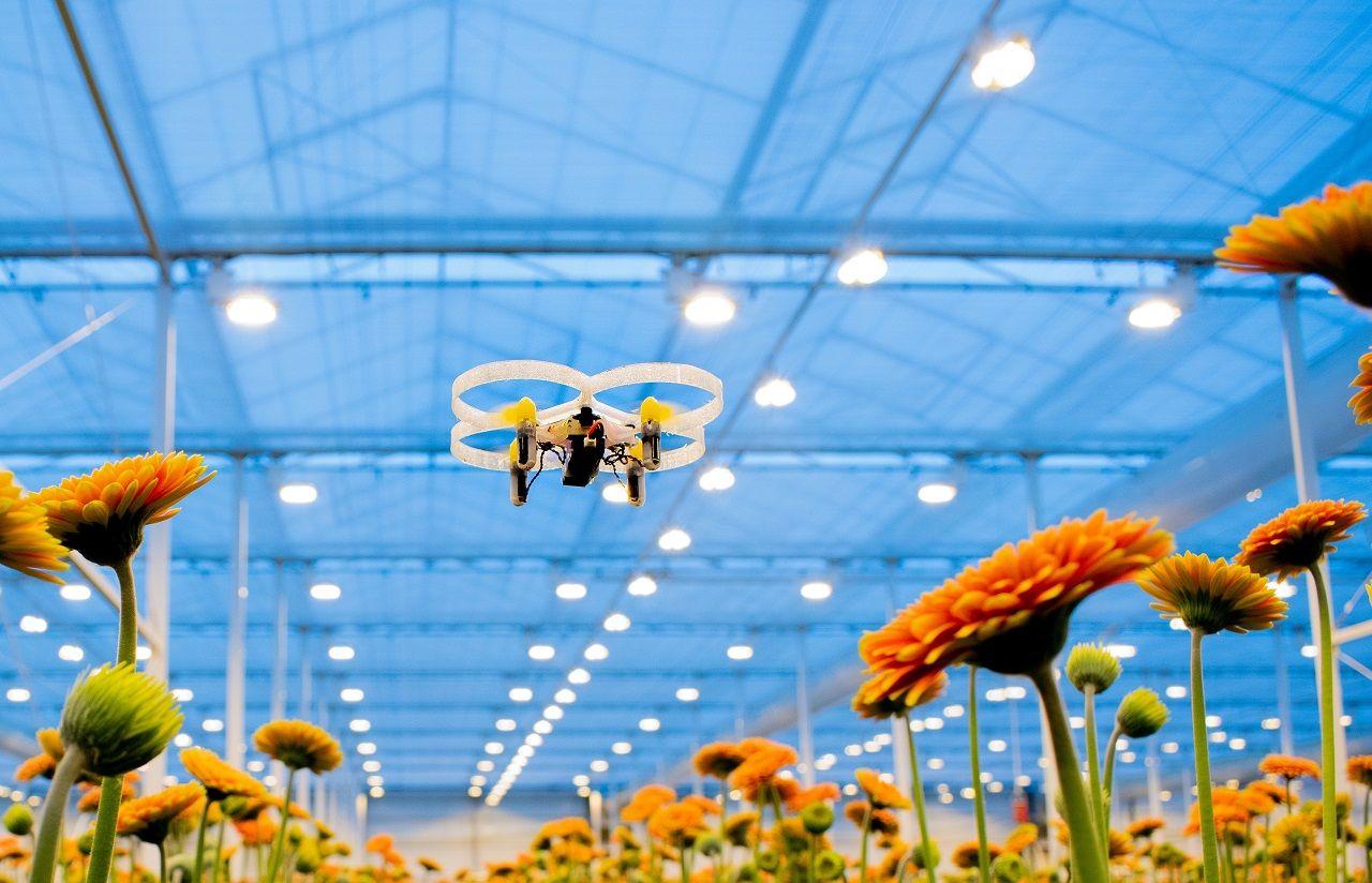 Hà Lan ứng dụng kỹ thuật công nghệ cao vào nông nghiệp để đạt được năng suất cực kỳ cao trên cùng một diện tích canh tác so với các quốc gia khác trên thế giới