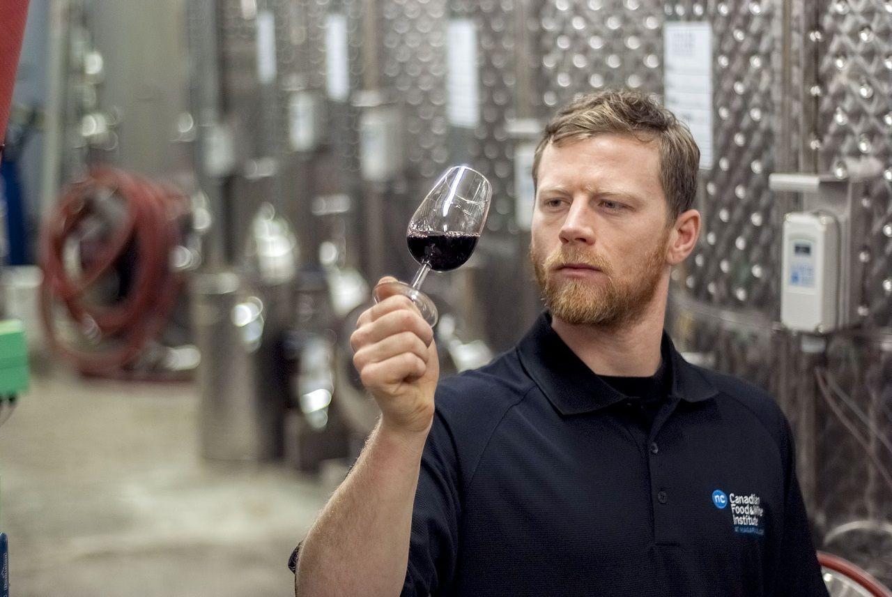 ... hoặc là chuyên gia về rượu vang