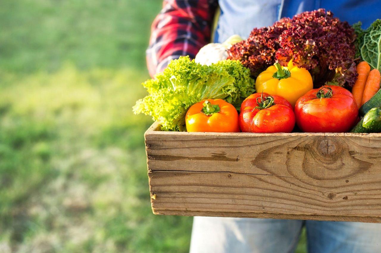 Các nhà hàng có xu hướng tìm kiếm nhà cung cấp thực phẩm tại địa phương trong tình hình các chuỗi cung ứng quốc tế bị đứt gãy