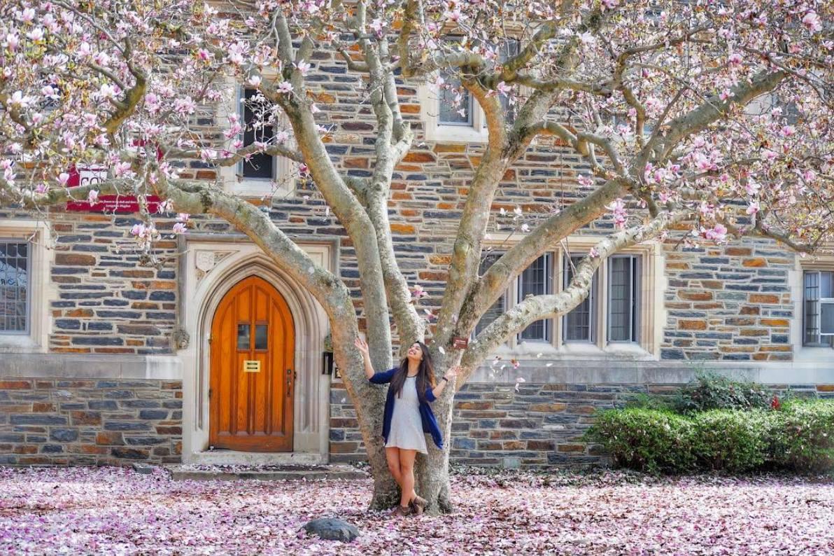 Một góc khuôn viên Đại học Duke
