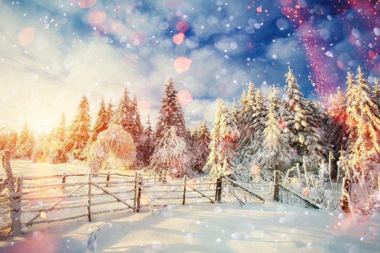 Mùa đông Thụy Điển