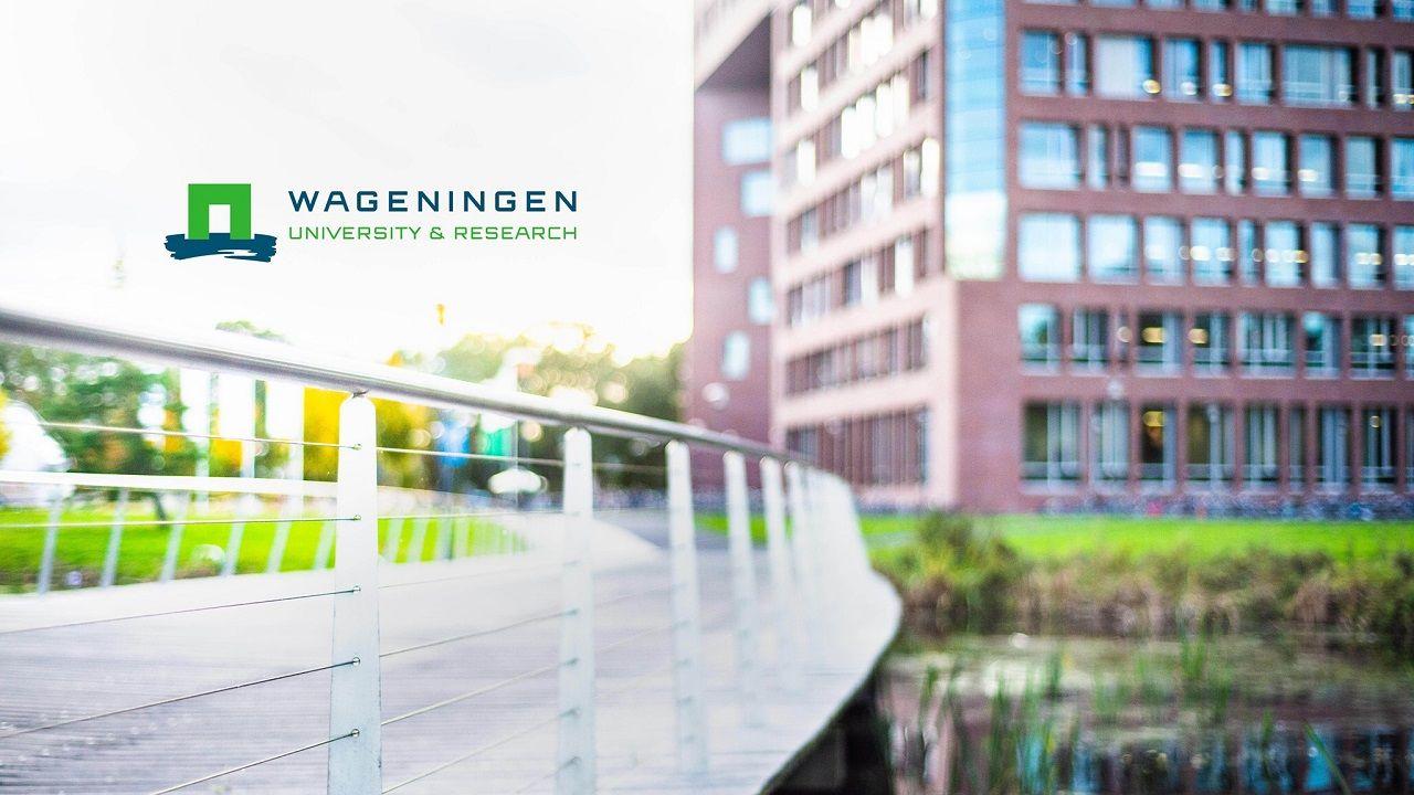 Đại học Wageningen hiện là trường nghiên cứu tốt nhất Hà Lan (2021)
