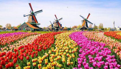 Hà Lan